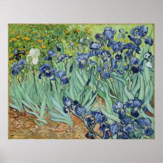 Iris de Van Gogh, arte del impresionismo del poste Impresiones