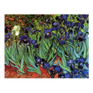 Iris de Van Gogh arte del impresionismo del poste
