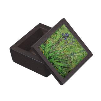 Iris de Van Gogh arte del jardín del impresionism Cajas De Recuerdo De Calidad