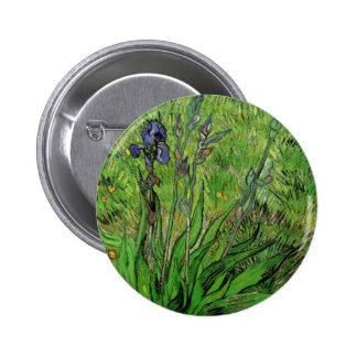 Iris de Van Gogh, arte del jardín del