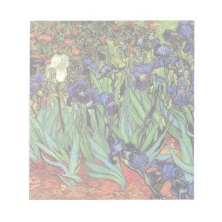Iris de Van Gogh, bella arte del jardín del Blocs