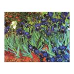 Iris de Van Gogh, bella arte del jardín del Impresión En Lienzo Estirada