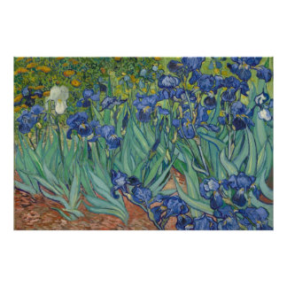 Iris de Van Gogh en el poster de XXL