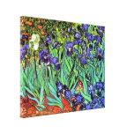 Iris de Van Gogh Impresión En Lienzo Estirada