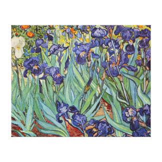 Iris de Van Gogh Impresión En Lona