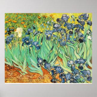 Iris de Van Gogh Impresiones