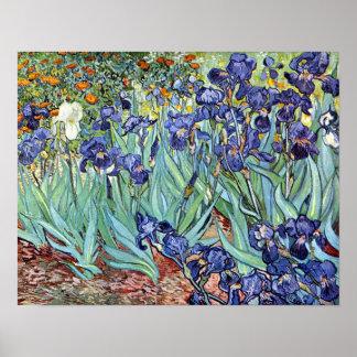 Iris de Vincent van Gogh 1898 Impresiones
