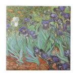 Iris de Vincent van Gogh, flores del jardín del Azulejos