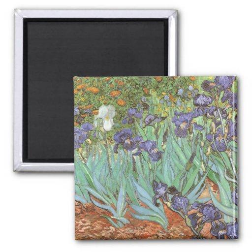 Iris de Vincent van Gogh, flores del jardín del Imanes Para Frigoríficos