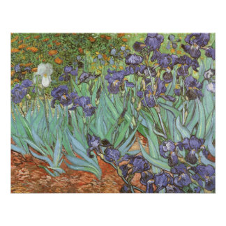 Iris de Vincent van Gogh flores del jardín del Posters