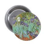 Iris de Vincent van Gogh, flores del jardín del Pin