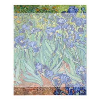 Iris de Vincent van Gogh Flyer Personalizado