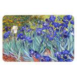 Iris de Vincent van Gogh Iman De Vinilo
