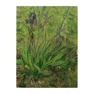 Iris de Vincent van Gogh, impresionismo del Impresión En Madera