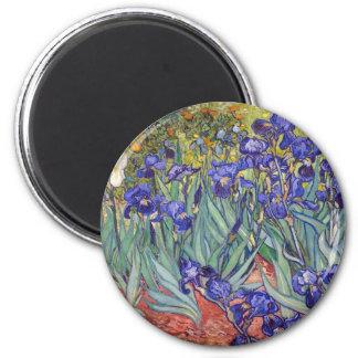 Iris de Vincent van Gogh que pintan la impresión d Imán
