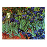 Iris de Vincent van Gogh Tarjetas Postales