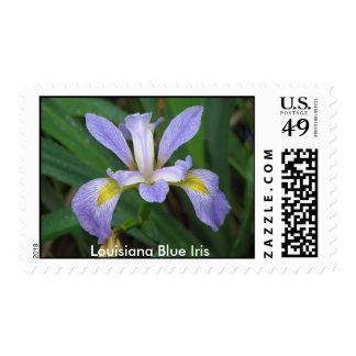 Iris del azul de Luisiana Timbre Postal