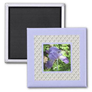 Iris del azul del del hogar y del jardín imán de frigorifico