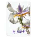 Iris del blanco de RSVP Comunicado