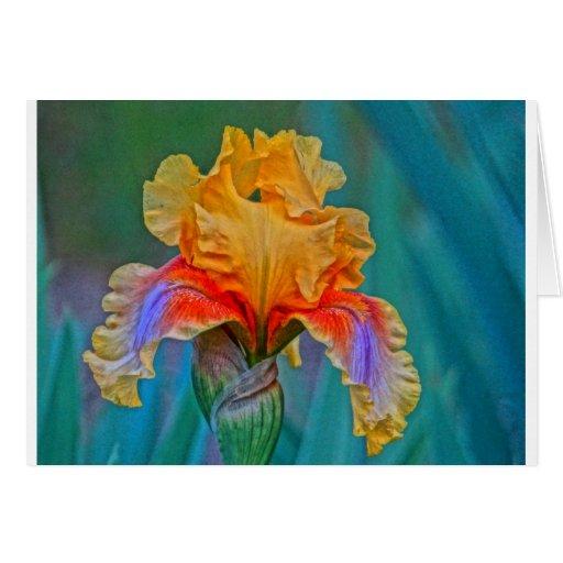 Iris del oro tarjeta de felicitación