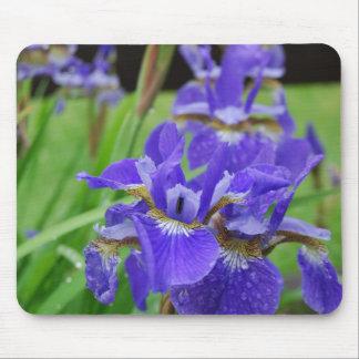 Iris en el jardín alfombrillas de raton