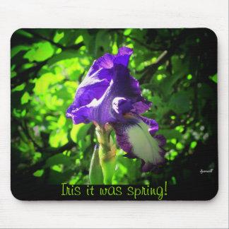 ¡Iris era primavera! Tapete De Raton