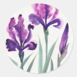 Iris Etiqueta Redonda