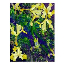 Iris fantasy Postcard
