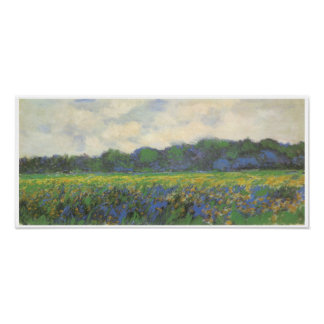 Iris Field at Giverny, 1887 Poster