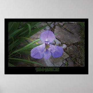 """Iris & Flagstone"" - Print"