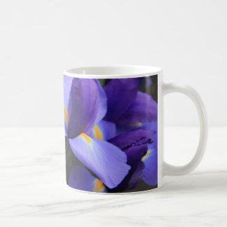 Iris floral, azul del jardín de la primavera y min taza básica blanca