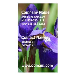 Iris floreciente tarjetas de visita