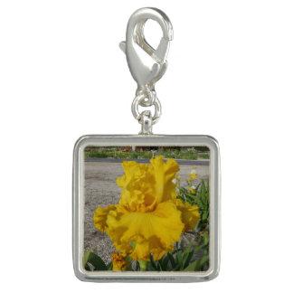 IRIS FLOWER CHARM Yellow Square