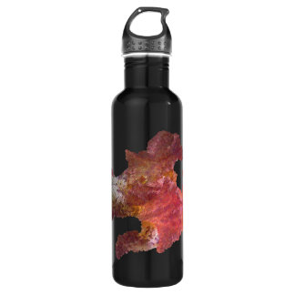 iris flower (digital image) 24oz water bottle