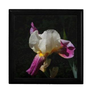 iris flower jewelry box