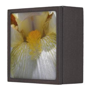 Iris Flower Photograph Gift Box