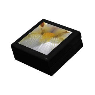 Iris Flower Photograph Jewelry Box