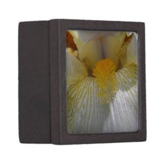 Iris Flower Photograph Keepsake Box
