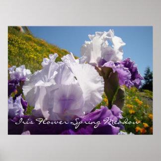 Iris Flower Spring Meadow art prints gifts Irises Posters