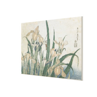 Iris Flowers and Grasshopper, c.1830-31 Stretched Canvas Print