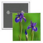 Iris Flowers Buttons