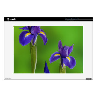 Iris Flowers Decal For Laptop