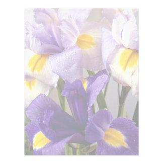 Iris flowers letterhead