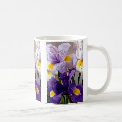 Iris flowers mugs