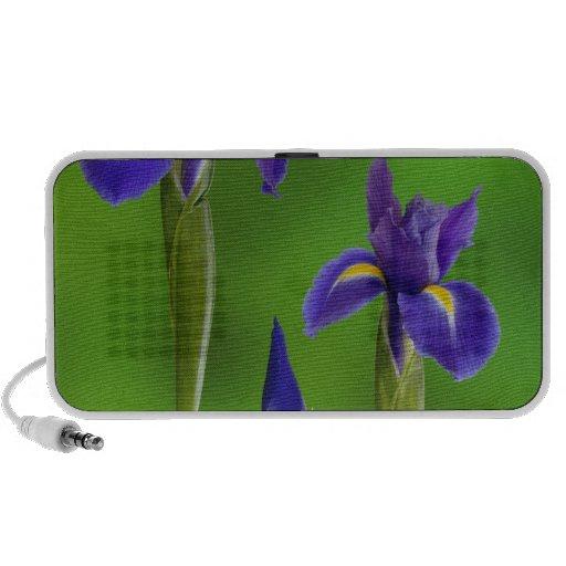 Iris Flowers Notebook Speaker