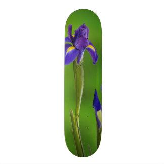 Iris Flowers Custom Skate Board