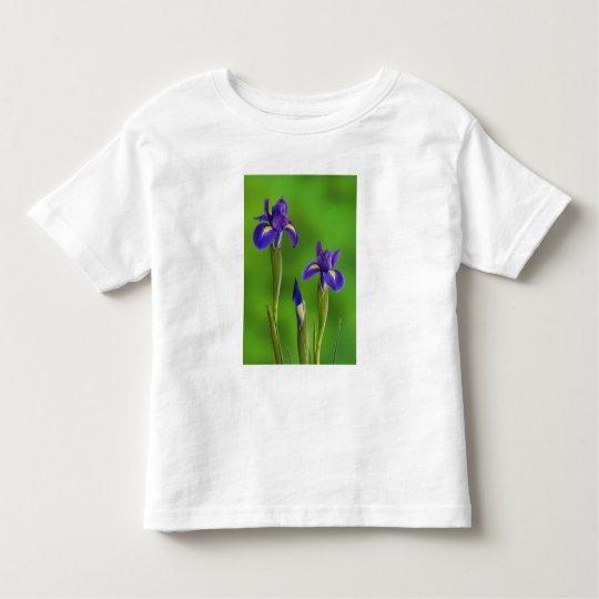 Iris Flowers Toddler T-shirt