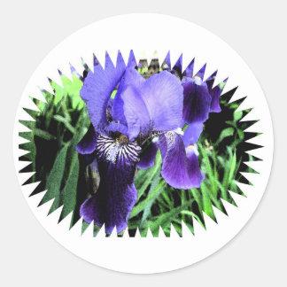 Iris- Fresco Style Classic Round Sticker