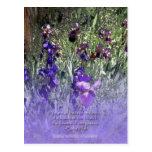 Iris Garden Baha'i Quotation Postcard