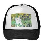 Iris - gato blanco gorro